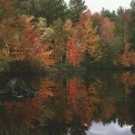 Hillsboro Pond, NH